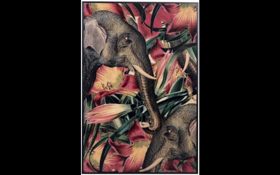Elephant Framed Canva