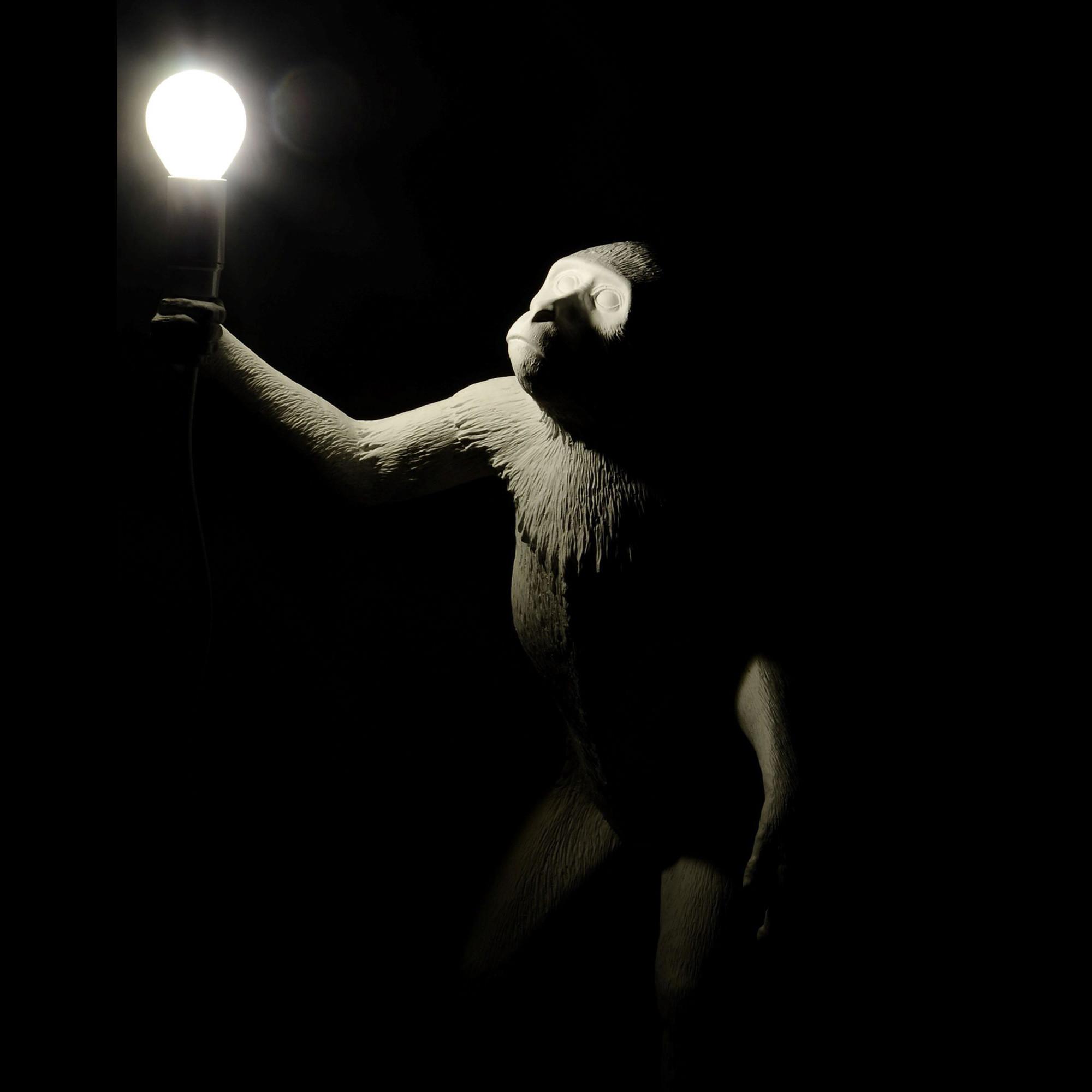 Lampada in resina monkey lamp seletti for Lampada scimmia seletti