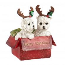 XMAS DOGS IN MERRY CHRISTAMAS BOX