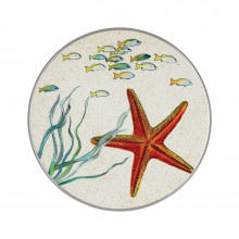 Sottopentola Sea Life Stella Marina